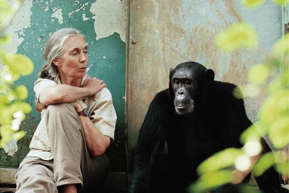 Jane Goodall with Freud